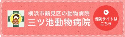 横浜市鶴見区の動物病院 三ツ池動物病院  当院サイトはこちら